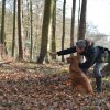 Retrievertraining